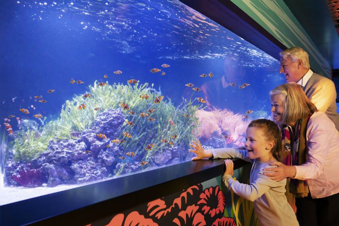Sea Life London Fast Track Entry (Advance) Tickets