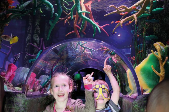 Sea Life London Standard Entry & Behind the Scenes Tour (Same Day) Tickets