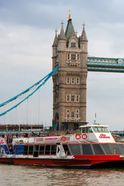 City cruises - Lunch cruise Tickets