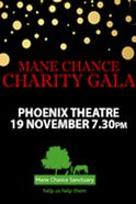 Mane Chance Charity Gala Tickets