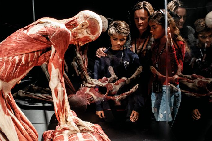 Body Worlds - London Tickets