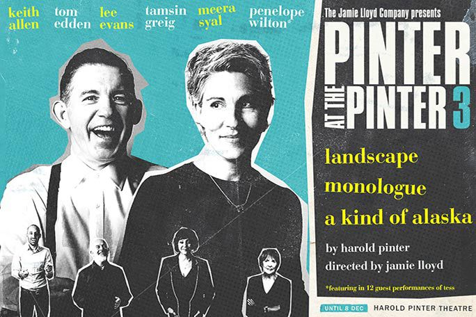 Pinter 3: Landscape / A Kind of Alaska / Monologue Tickets