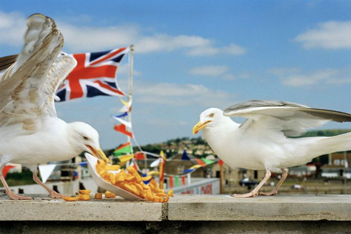 The Great British Seaside Tickets